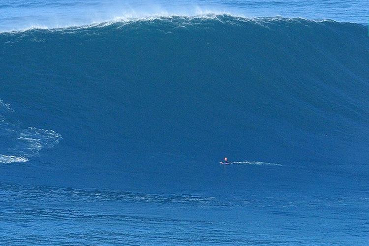 Mike Stewart: Não teve problemas em mergulhar com os patos na Praia do Norte |  Foto: Estrelinha / APB