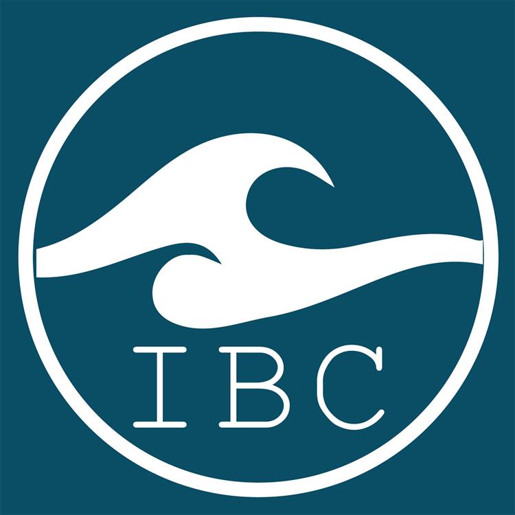 International Bodyboarding Corporation: o logotipo oficial da nova organização de bodyboarding