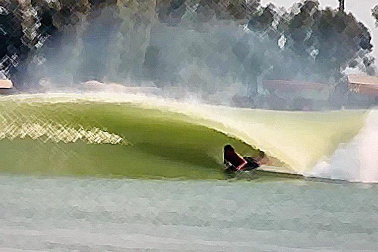 fioravantibodyboard
